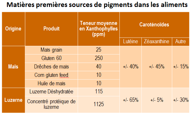 Matières premières sources de pigments dans les aliments