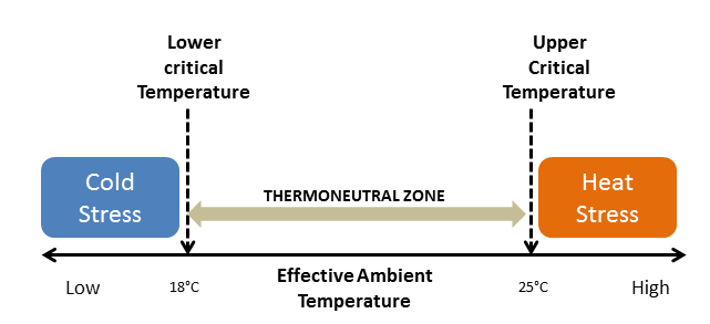 heat stress pig thermoneutral zone