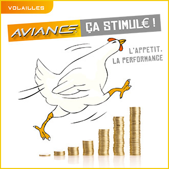 Aviance stimule les performances des volailles de chair