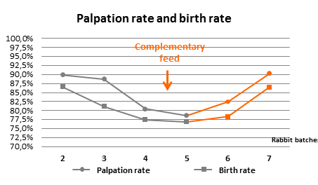 palpation rate birth rate rabbits with complementary feed