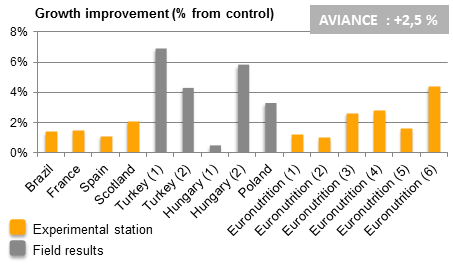 Aviance chart trials results growth improvement broilers
