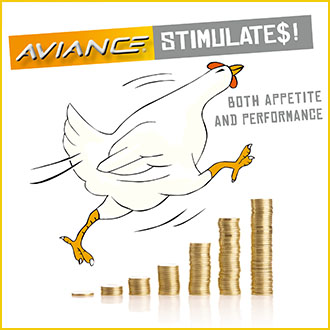 Aviance natural product for broilers performance