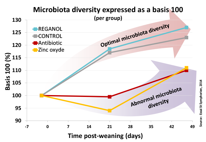 reganol decrease antibiotics and zinc oxide evolutionmicrobiota diversity weaning piglets