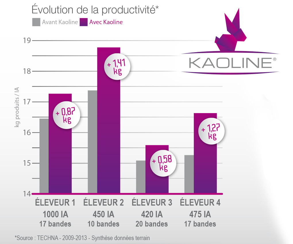 Kaoline: demedicalization and productivity of rabbits
