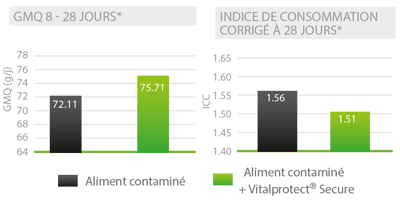 Vitalprotect mycotoxines essai GMQ indice consommation